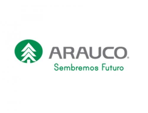 Paneles Arauco S.A. Planta Nueva Aldea